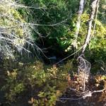 Water flowing under